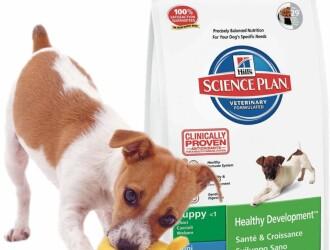 Выбираем корм для собак: «Хиллс»