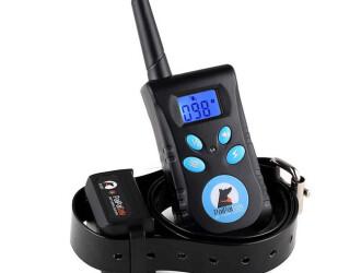 ТОП-5: выбираем электрический ошейник для собак